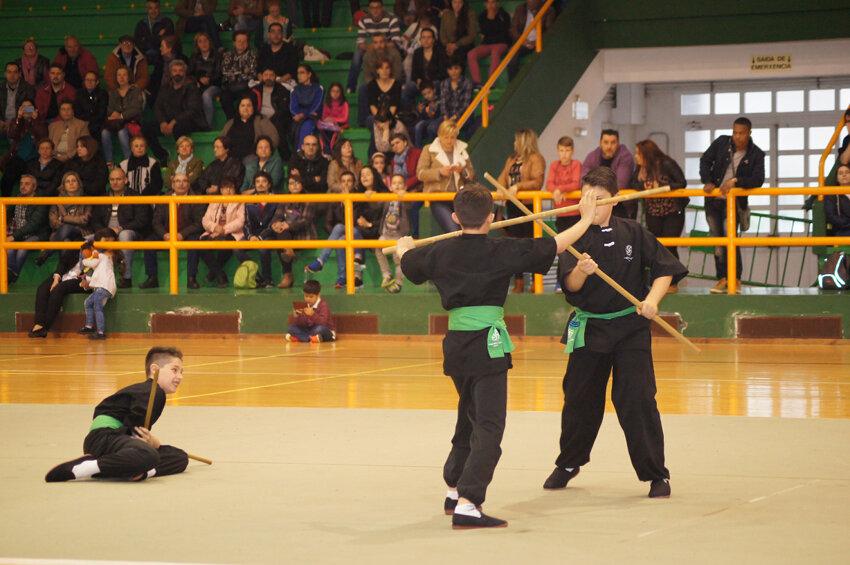 copa-diputacion-wushu-infantil-2016-verin-16