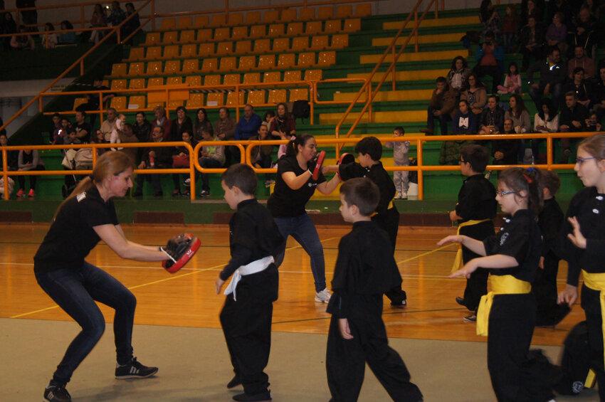 copa-diputacion-wushu-infantil-2016-verin-6