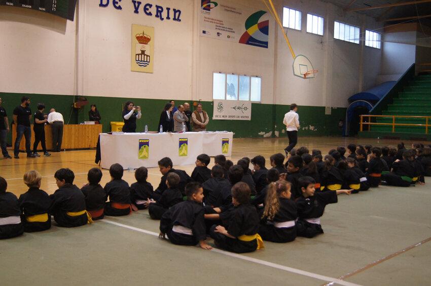 copa-diputacion-wushu-infantil-2016-verin-8